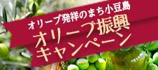 オリーブ発祥のまち小豆島 オリーブ復興キャンペーン