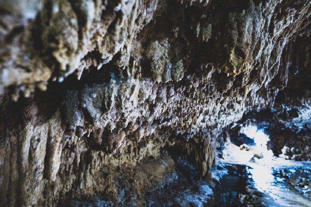 撮影地:赤崎鍾乳洞