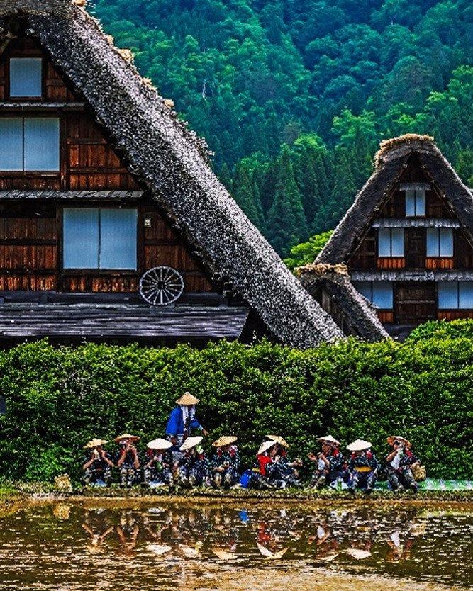 ◆白川郷合掌造り集落(飛騨圏域)