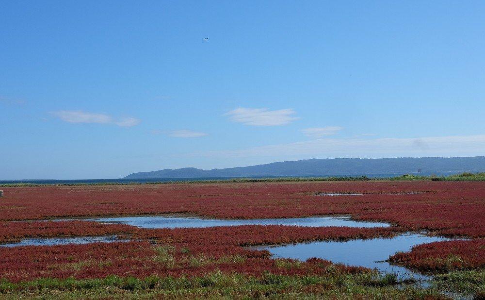 工場の近くにある能取岬の景観は、四季を通じて美しい