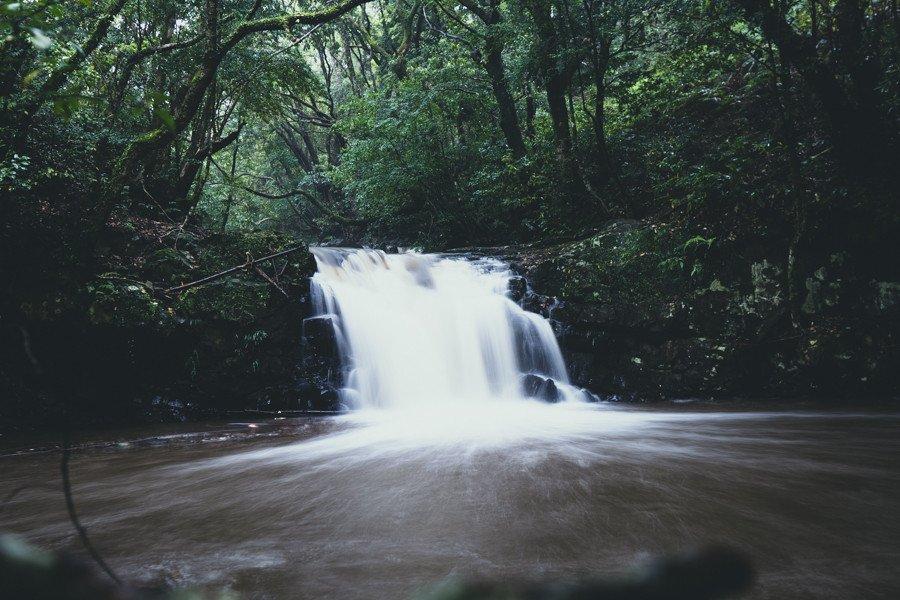 撮影地:男淵・女淵の滝