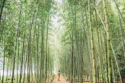 ◆木曽川渡し場遊歩道