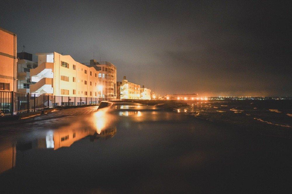 撮影地:宮城海岸