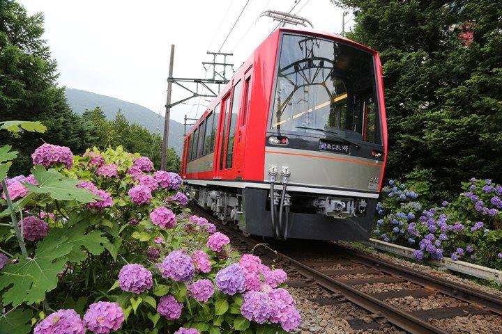箱根登山鉄道強羅駅近辺 箱根登山鉄道が運行再開!
