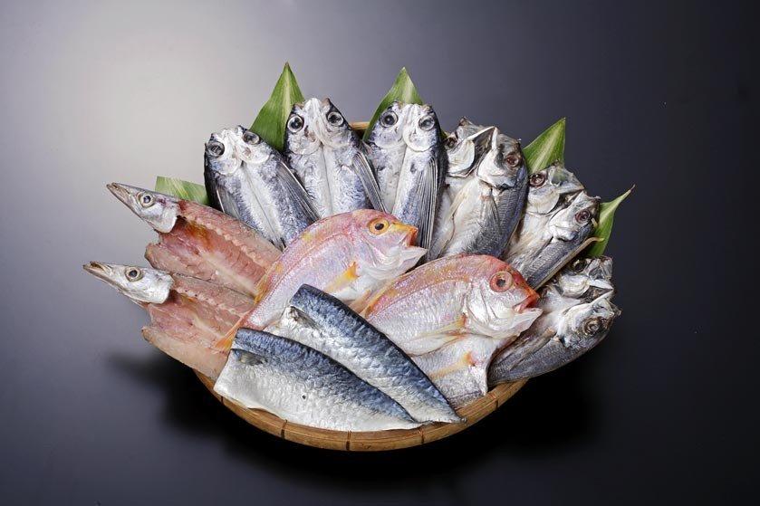 あご(トビウオ)、真あじ、かます、れんこ鯛、真さばが入ったセット