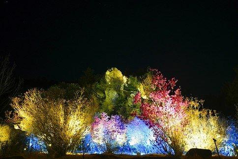 1.雲岩公園 つつじライトアップ