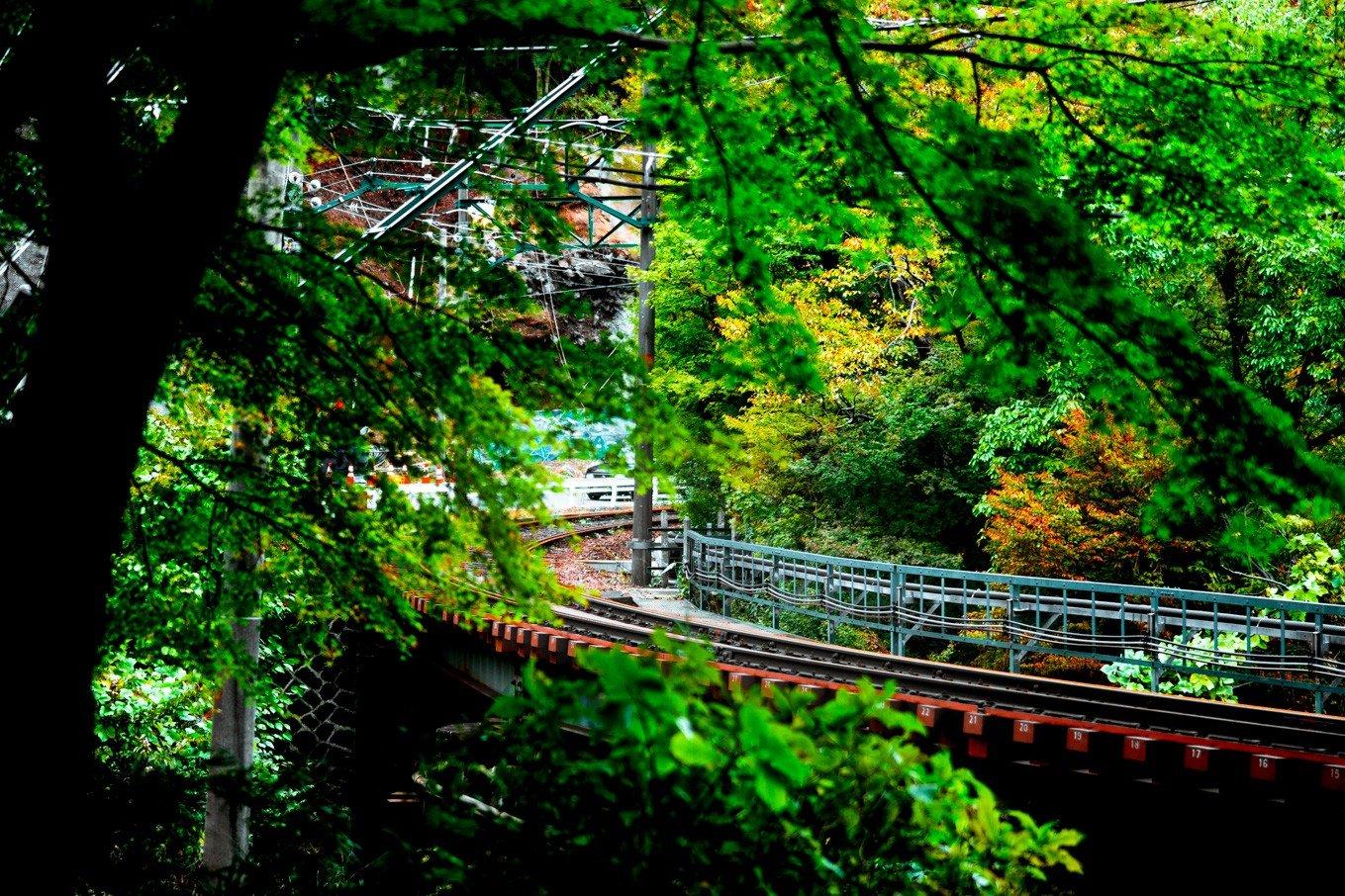 箱根登山鉄道強羅駅近辺運休中の線路
