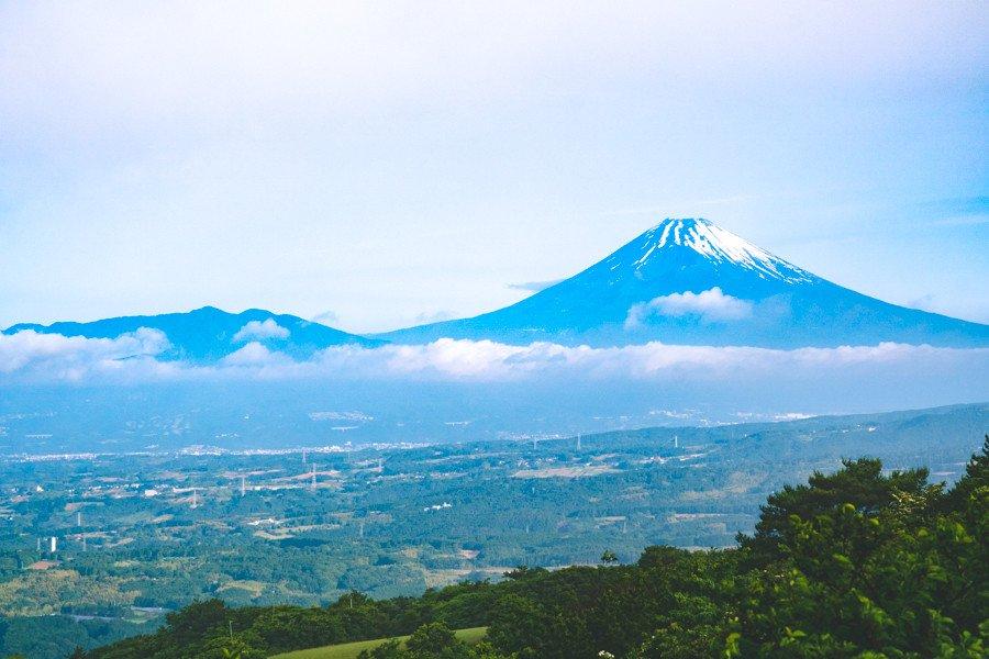 撮影地:滝知山園地