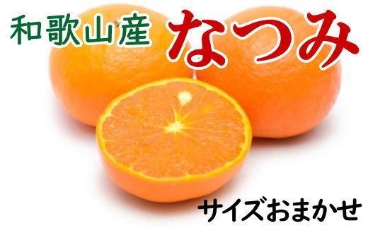 ☆先行予約☆【希少柑橘】和歌山産なつみ約5kg(S~2Lサイズおまかせ)【2022年4月中旬より発送】