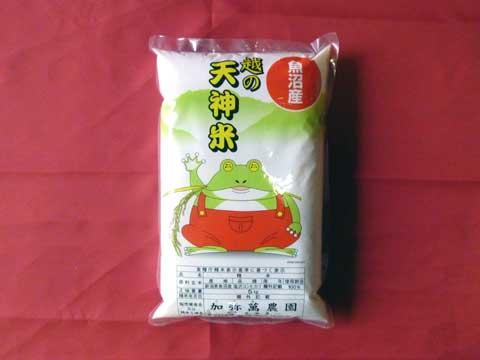 【南魚沼塩沢産コシヒカリ】『天神米』5kg