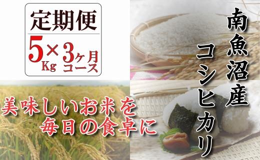 【頒布会】契約栽培 南魚沼産コシヒカリ「八龍の尾」5kg×全3回
