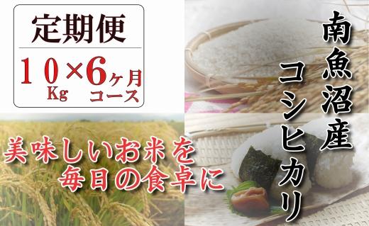 【頒布会】契約栽培 南魚沼産コシヒカリ「八龍の尾」10kg×全6回