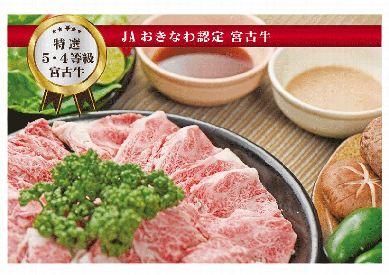 宮古島産黒毛和牛 特選5等級・4等級 すき焼き・しゃぶしゃぶ 400g