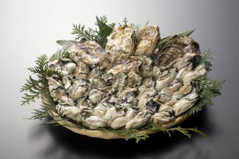 プレミアムトップかき 森脇水産生牡蠣むき身・殻付きセット(加熱用)2㎏と30ヶ