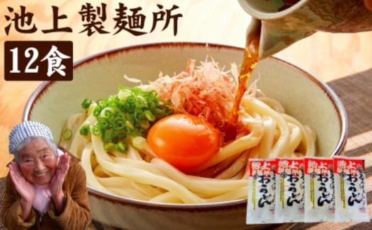 池上製麺所るみばあちゃん監修!讃岐生うどん12食入(鎌田醤油だし醤油付)