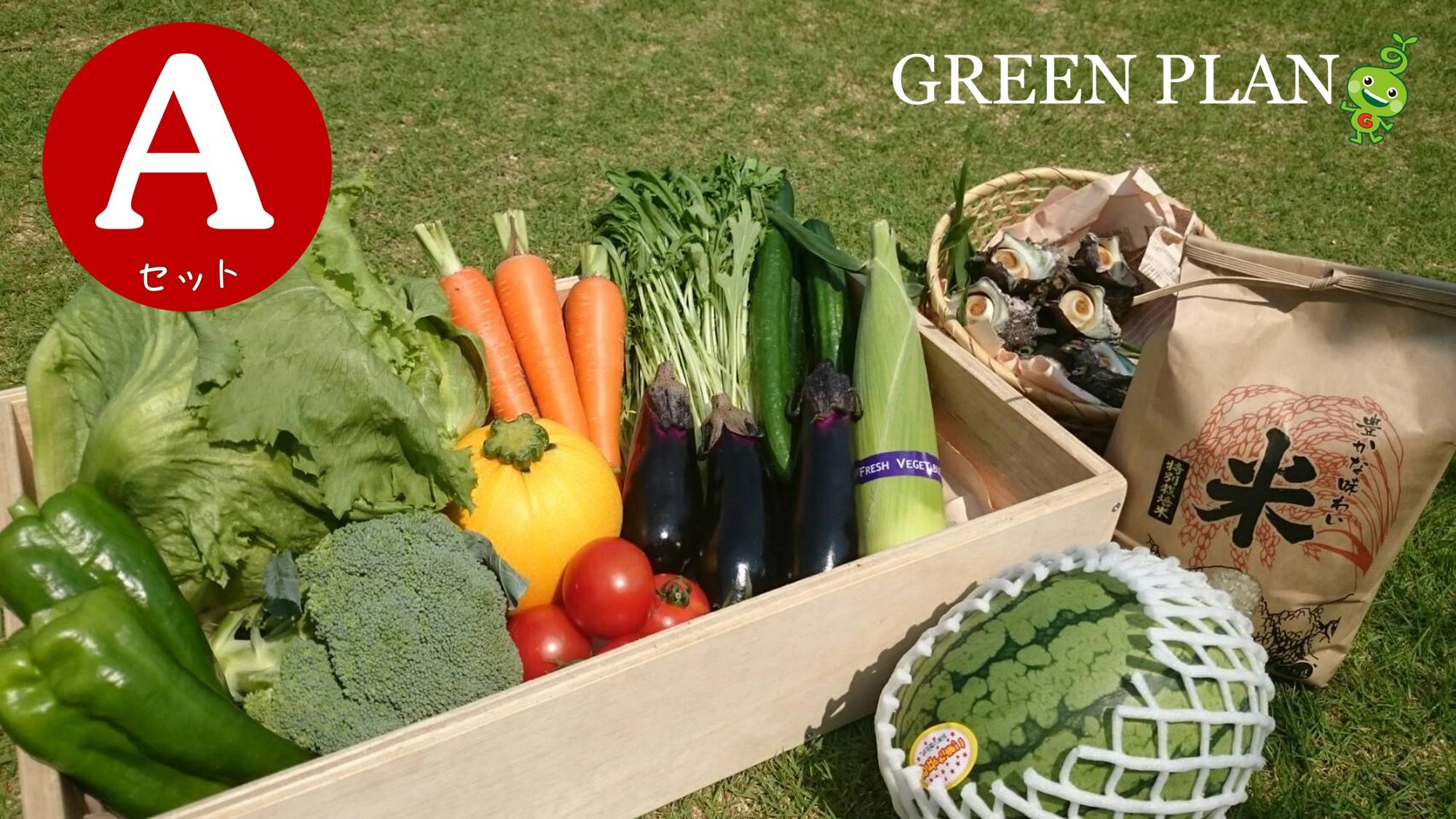 旬の野菜12種+果物・お米など詰合せAセット