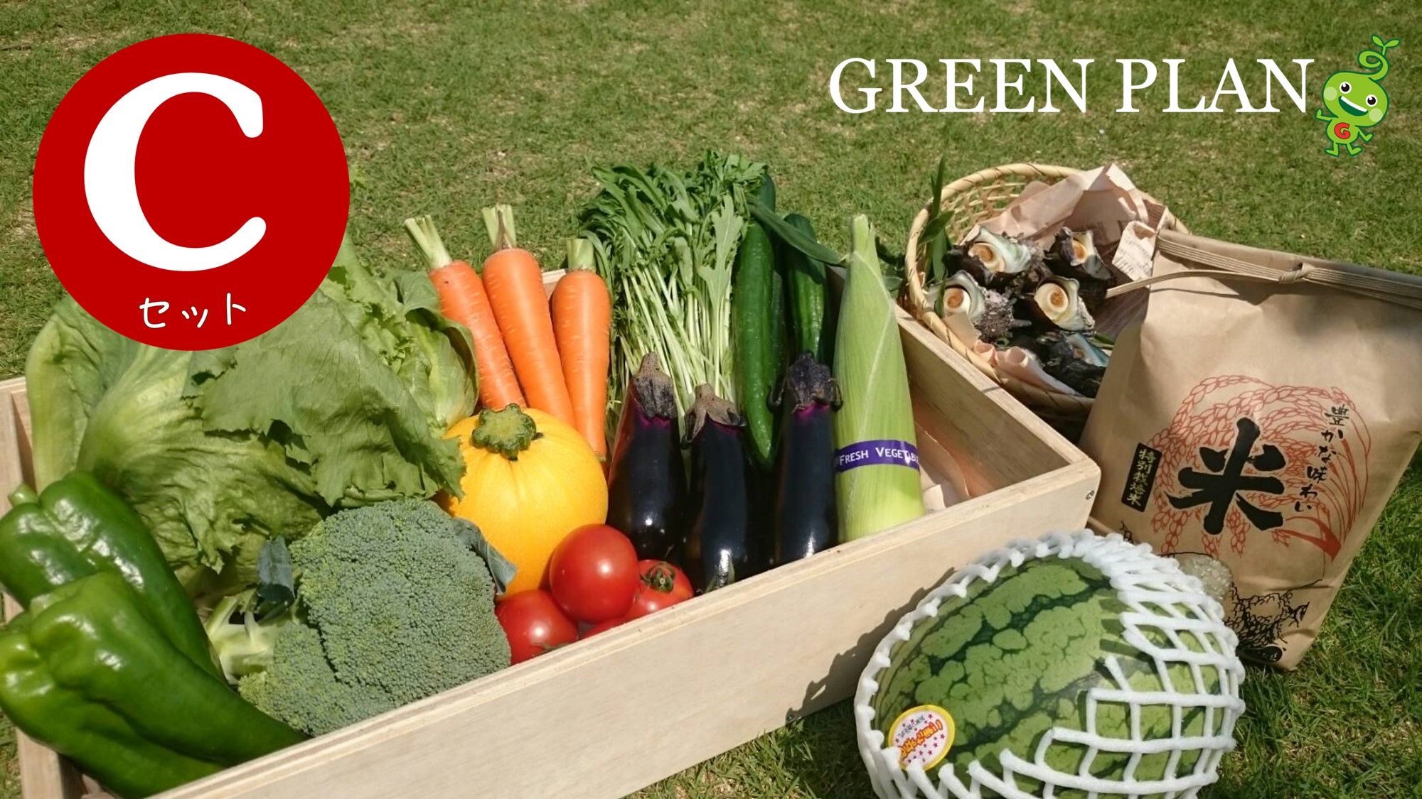 【ギフト用】旬の野菜12種+果物・お米など詰合せCセット
