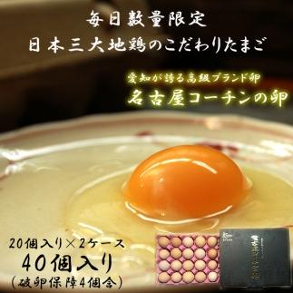 ☆名古屋コーチンの卵40個入り(36個+破卵保証4個)