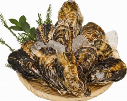 殻付冷凍牡蠣3kg【漁師直送!】