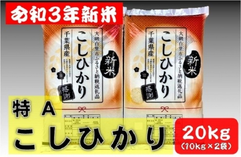 【期間限定】新米20kg令和3年産コシヒカリ(10kg×2袋)千葉県大網白里市産