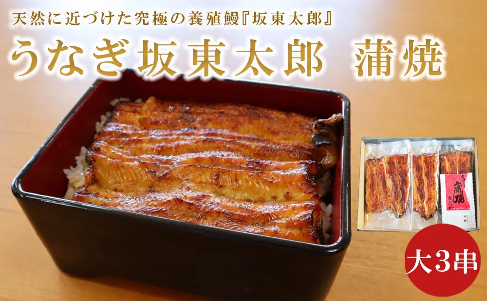 うなぎ坂東太郎蒲焼大3串