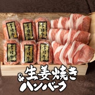 常陸牛ハンバーグ6個&茨城豚ロース生姜焼き500gセット【肉のイイジマ】