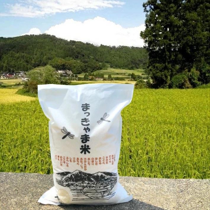 【特別栽培米】石川県産イセヒカリ棚田米【玄米】
