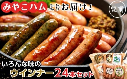 【みやこハムよりお届け!】いろんな味のウインナー24本セット(V300)