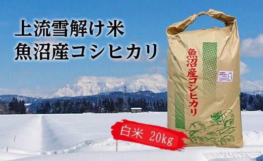 【令和二年産】豪雪地帯ならではの風土が育んだ魚沼コシヒカリ(白米20㎏)
