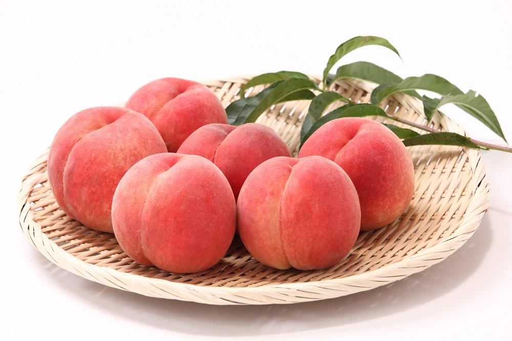 【2021年度産先行受付】大人気!!美味しい品種厳選!「白桃約5kg」