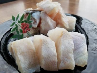 幻の魚 本クエ鍋用 紀州和歌山