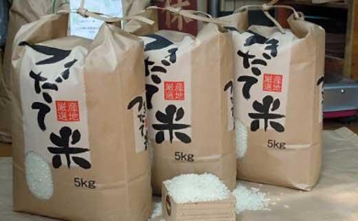 行田のお米「彩のかがやき10kg」