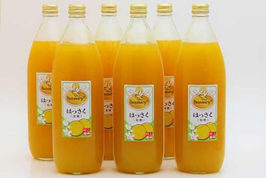 honey+はっさくジュース 1000ml×6本