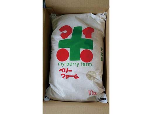 苗作りからの自家製環境こだわり米夢ごこち10kg