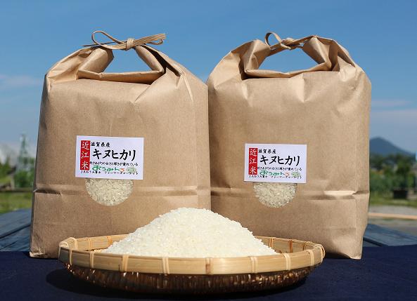 近江米「キヌヒカリ」20kg