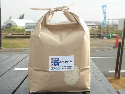 近江米「みずかがみ」10kg