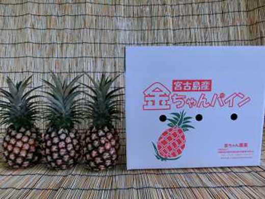 ★2018年5月以降発送★宮古島産ピーチパイン3個セット