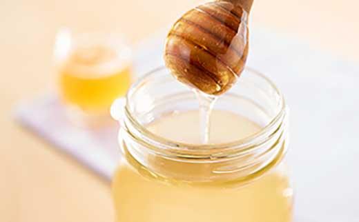 【数量限定】玉野産はちみつ「滝の蜜」3本セット