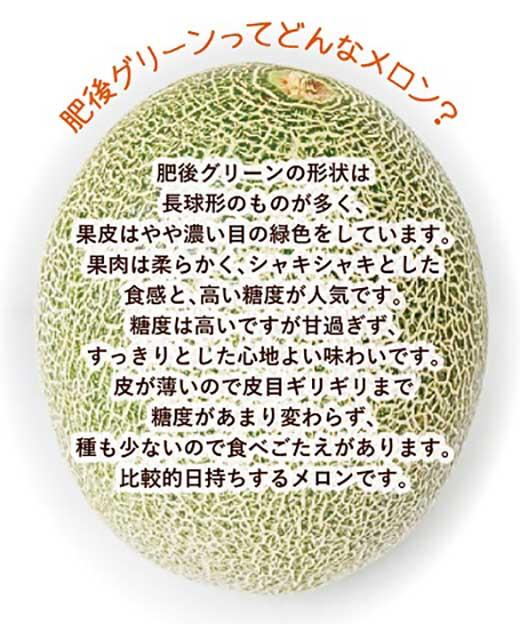 肥後グリーンメロン大玉限定!4kg以上!(1玉2kg以上)ネット系メロン