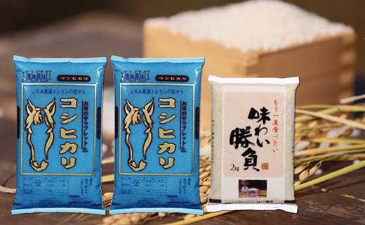 美浦の逸品「サラブレッドコシヒカリ」5kg×2と「甘さ際立つはるみ」2kg【12㎏】