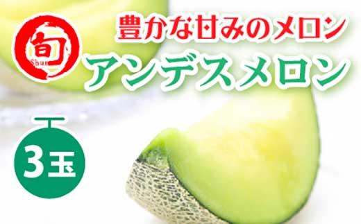 アンデスメロン(L~4L)3玉入り旬の味覚市場