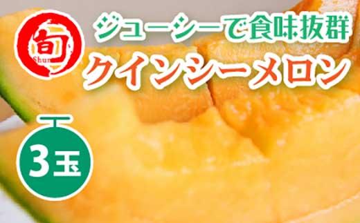 クインシーメロン(L~4L)3玉入り旬の味覚市場