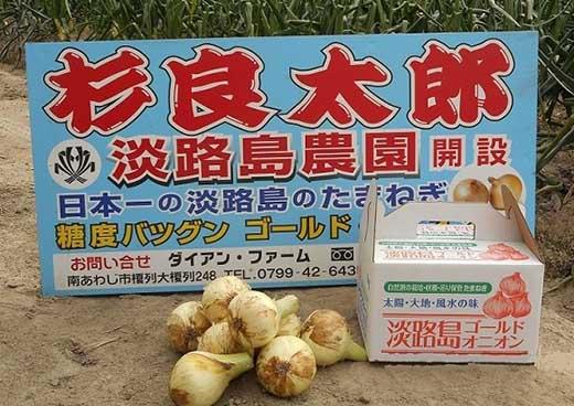 極早生新玉「淡路島ゴールドオニオン」5kg
