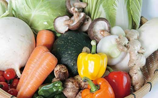 最南端 旬の野菜便