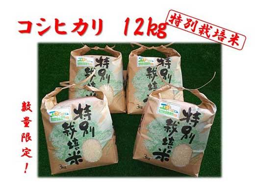 美浦産特別栽培米コシヒカリ『おかだいらの恵』12kg(3kg×4)