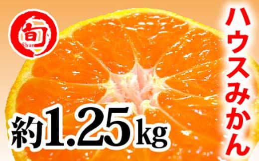 【高級】ハウスみかん 1.25Kg(2S~L)化粧箱入り 旬の味覚市場