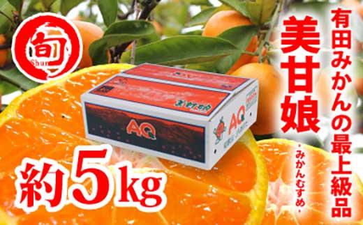 【極上みかん】 幻のみかん美甘娘(秀品) 5kg 旬の味覚市場