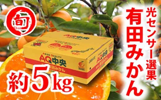 【秀選品】有田みかん光センサー選果5kg(S~L)旬の味覚市場