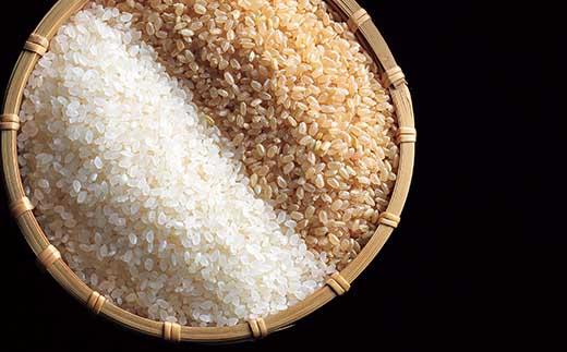 最高級魚沼産コシヒカリ「雪椿」20kg(5kg×4袋) 特別栽培米 令和元年産