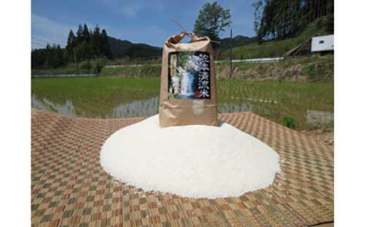 佐本川の清流で育てた「佐本清流米(コシヒカリ)」15kg